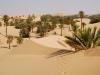 Algeria- le-palme di Beni-Abbés