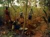 Nigeria- lavoro rurale