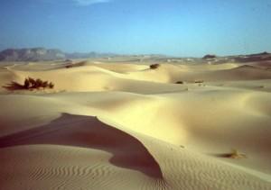 Algeria- al sud