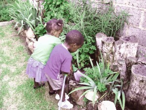 Africa del sud- gemelli