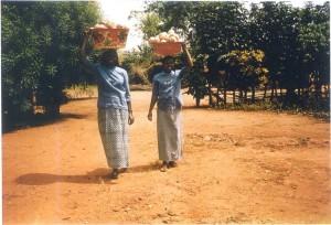 Nigeria- con paniere