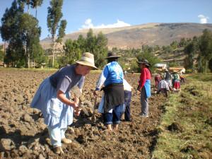 Perù- Chiara al lavoro