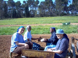 sorelle al lavoro nei campi