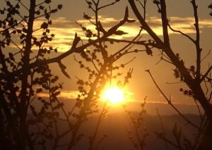 sorge il sole